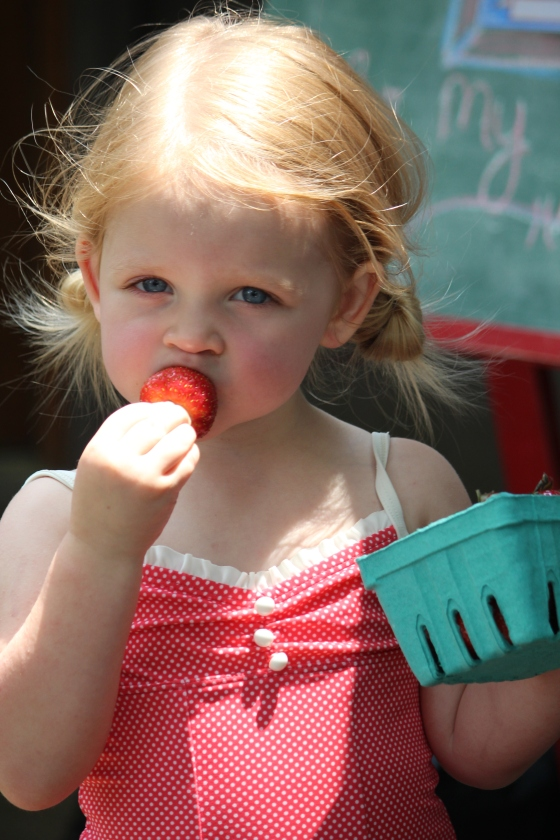 Miss Sunday S Third A Farm Stand Birthday Party Part 2