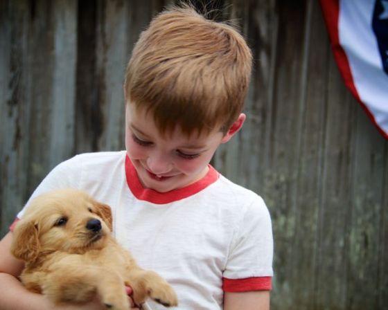 Gid's Puppy 1804