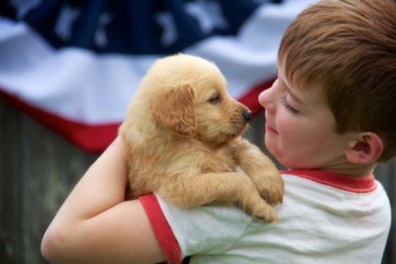 Gid's Puppy 1813