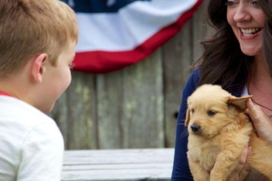 Gid's Puppy 1817