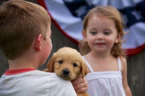Gid's Puppy 1838
