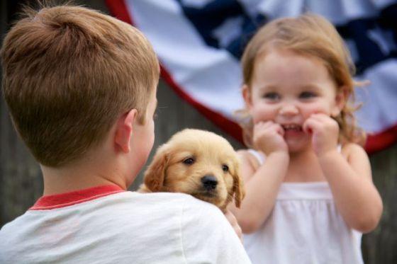 Gid's Puppy 1839