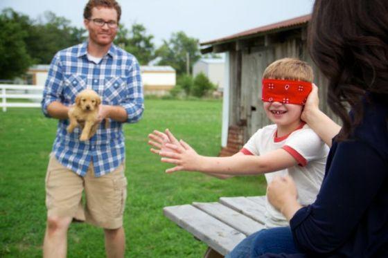 Gid's Puppy 1800