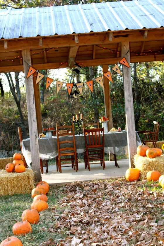 Welcome to our Halloween party in the woods!